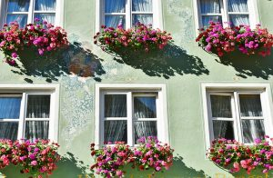 very pretty house window